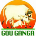 MAA GOU PRODUCTS LTD